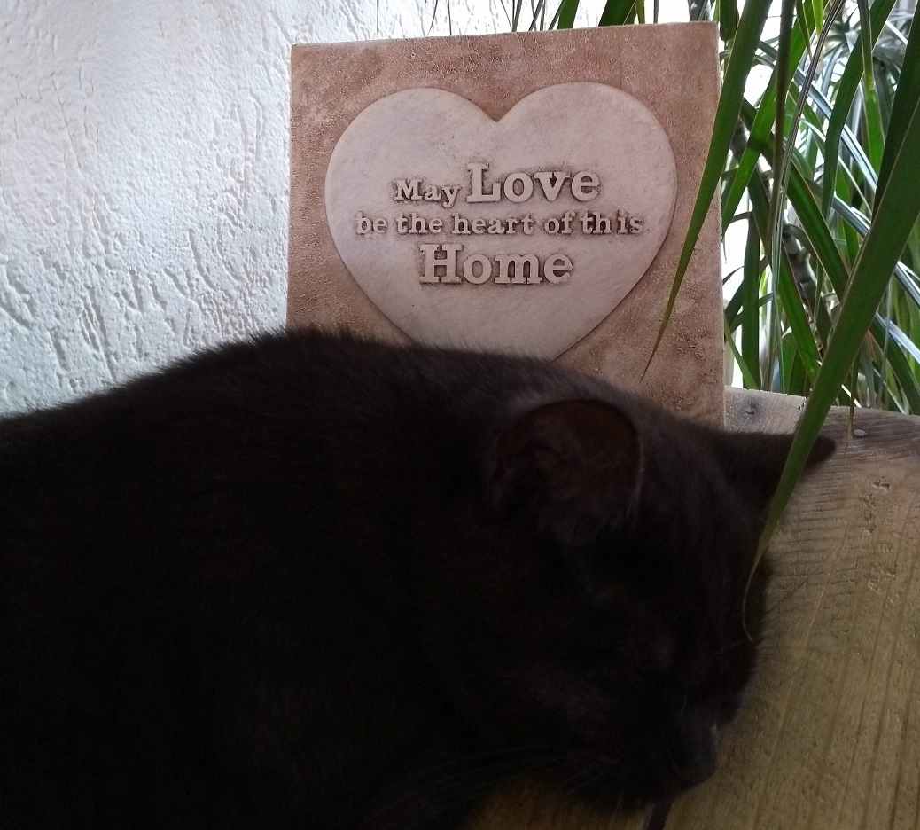 May love be the heart of this home